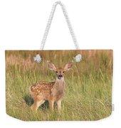 Mule Deer Fawn Is All Ears Weekender Tote Bag
