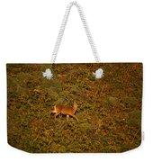 Mule Deer - Mattole Beach Weekender Tote Bag