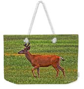 Mule Deer On The Sante Fe Trail Weekender Tote Bag
