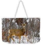 Mule Deer Portrait In Heavy Snow Weekender Tote Bag