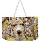 Mule Deer Portrait In The Pike National Forest Weekender Tote Bag