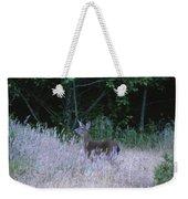 Mule Deer - Sinkyone Wilderness Weekender Tote Bag