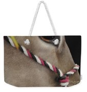 Mule Eye Weekender Tote Bag