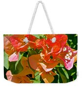 Multi-colored Bougainvillea At Pilgrim Place In Claremont-california  Weekender Tote Bag