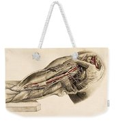 Muscles And Blood Vessels In Arm, 1851 Weekender Tote Bag