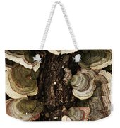 Mushroom Shells By The Lake Shore Weekender Tote Bag