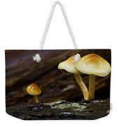 Mushroom Trio Weekender Tote Bag