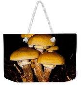Mushrooms By Night Weekender Tote Bag