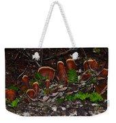 Mushrooms,log And Ferns Weekender Tote Bag