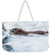 Muskrat Spring Swim Weekender Tote Bag