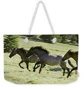 Mustang Mares Weekender Tote Bag