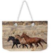 Mustang Trio Weekender Tote Bag by Mike  Dawson