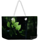 Mute And Motionless As If Himself A Shadow Weekender Tote Bag