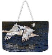Mute Swan Take Off Weekender Tote Bag