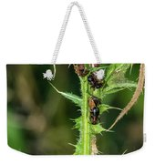 Mutualism - Ants And Treehoppers Weekender Tote Bag