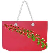 My Bougainvillea Aurea 4 Weekender Tote Bag
