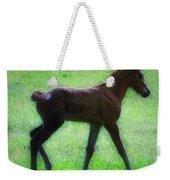 My Little Pony Weekender Tote Bag