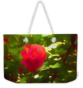 My Love Is Like  A Red Red Rose Of Sharon Weekender Tote Bag