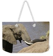 My Trunk Needs Drying Out Weekender Tote Bag