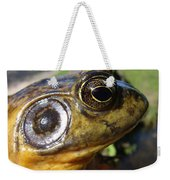 My What Big Eyes You Have Weekender Tote Bag
