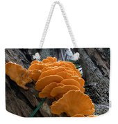 Myakka Fungi Weekender Tote Bag