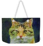Mysterious Cat Weekender Tote Bag