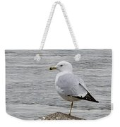 N Y C Water Gull Weekender Tote Bag