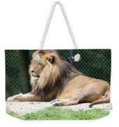 Nappin' Lion Weekender Tote Bag