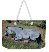 Napping Horse Weekender Tote Bag