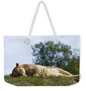 Nappy Time Weekender Tote Bag