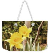 Narcissus Of A Plant Weekender Tote Bag