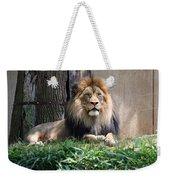 National Zoo - Luke - African Lion Weekender Tote Bag