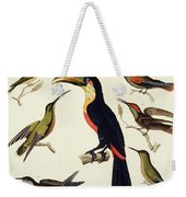 Native Birds, Including The Toucan From The Amazon, Brazil Weekender Tote Bag