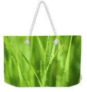 Native Prairie Grasses Weekender Tote Bag