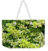 Natural Background With Small Yellow Green Leaves. Weekender Tote Bag