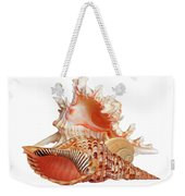 Natural Shell Collection On White Weekender Tote Bag