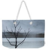 Nature -  The Naked Tree Weekender Tote Bag