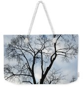 Nature - Tree In Toronto Weekender Tote Bag