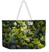 Nature Abstract 5 Weekender Tote Bag