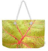 Nature Abstract Sea Grape Leaf Weekender Tote Bag