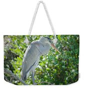 Nature At Its Best Weekender Tote Bag