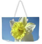 Nature Daffodil Flowers Art Prints Spring Nature Art Weekender Tote Bag
