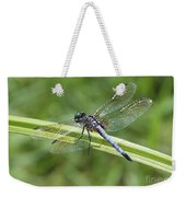 Nature Macro - Blue Dragonfly Weekender Tote Bag