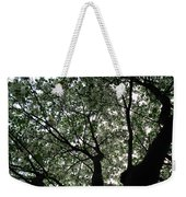 Nature's Cathedral 2 Weekender Tote Bag