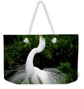 Nature's Glory Weekender Tote Bag