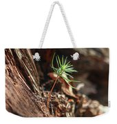 Natures Renewal  Weekender Tote Bag