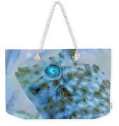 Nautical Beach And Fish #4 Weekender Tote Bag