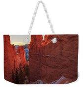 Navajo Loop Weekender Tote Bag
