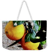 Naval Oranges On The Tree Weekender Tote Bag