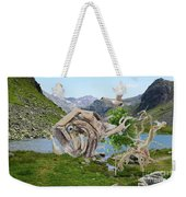 Near The Lake 3 Weekender Tote Bag